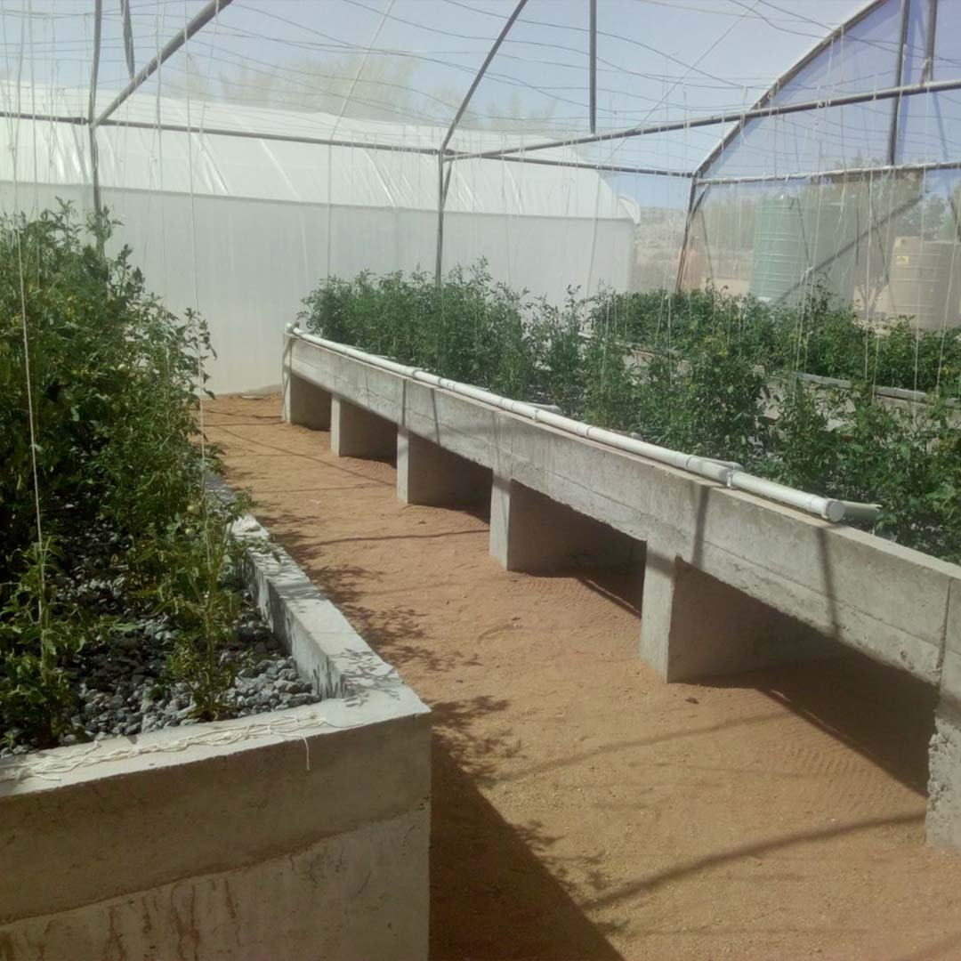 Grow beds