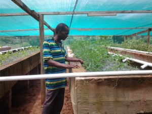 Wilson tends to the INMED aquaponics unit installed in his community.