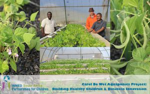 2carel-de-wet-school-aquaponics-collage2