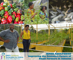 jamaica-aquaponics-collage