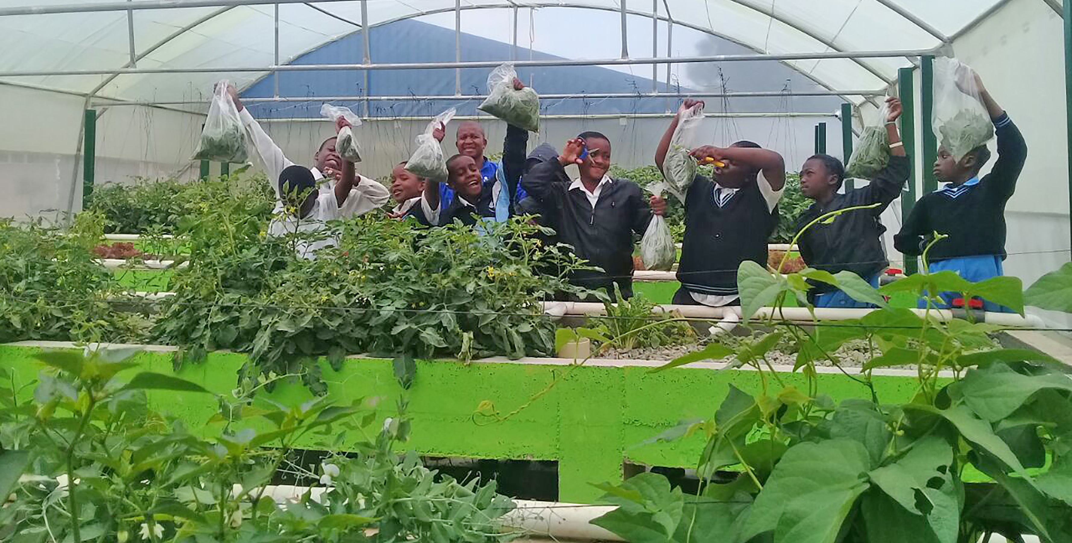 South Africa School Sets Stage for Aquaponics Training Curricula