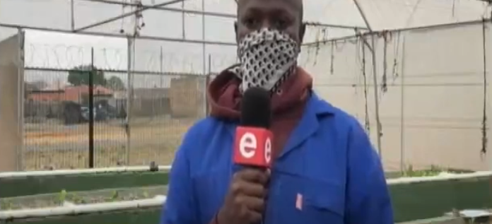 New Type of Farming Takes Off in Soweto